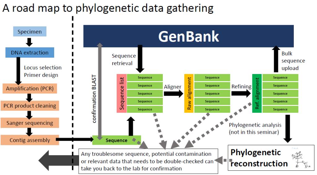 phylodatagathering