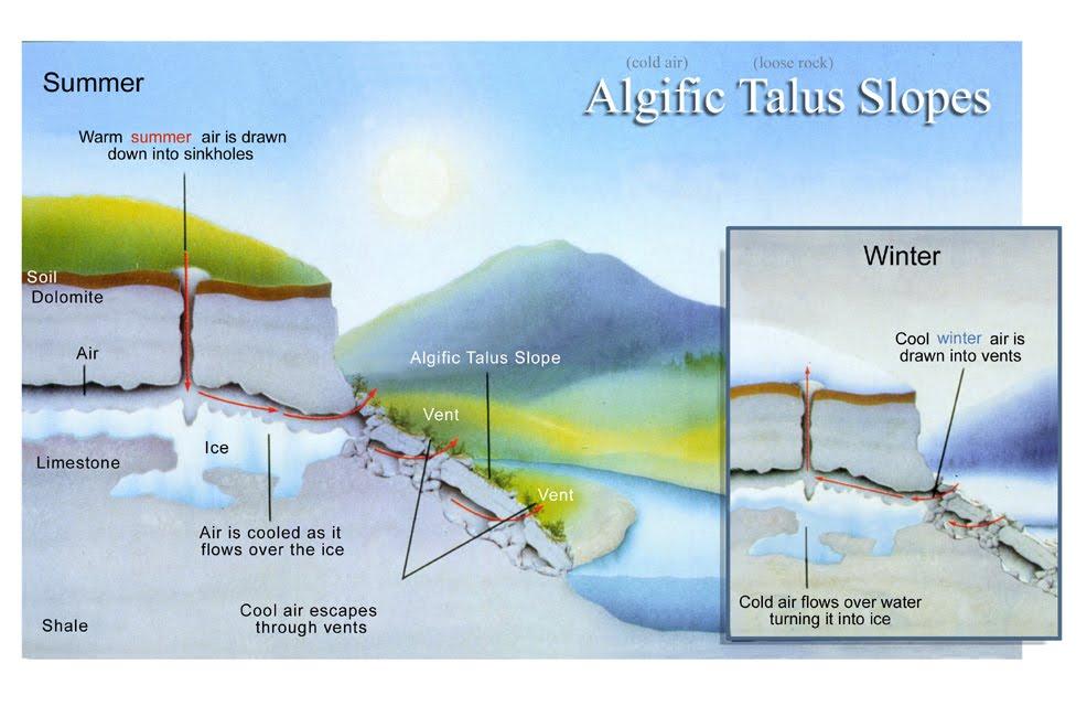 algificslope